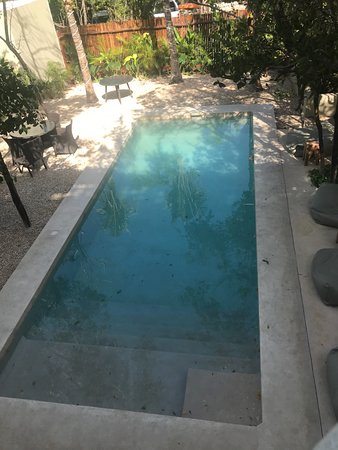 Soliman Bay, Mexico: Inside pool did need a bit of cleaning