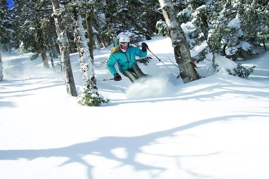 Warren, VT: Sugarbush has woods including 2000-acre Slide Brook Basin