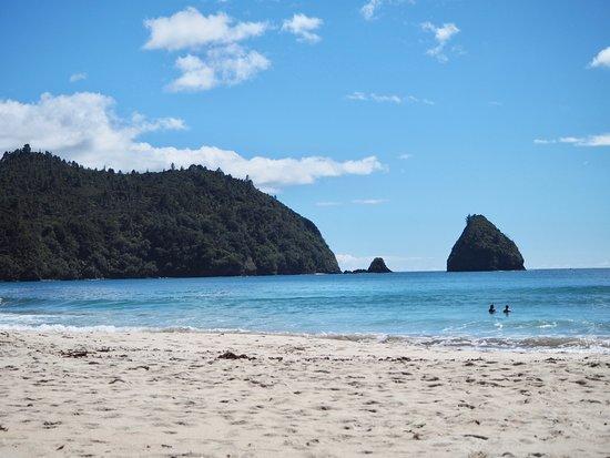Whangapoua, New Zealand: Beautiful waters and native bush