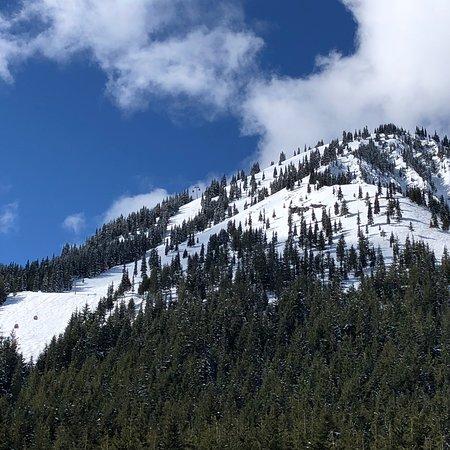 Crystal Mountain, WA: photo1.jpg