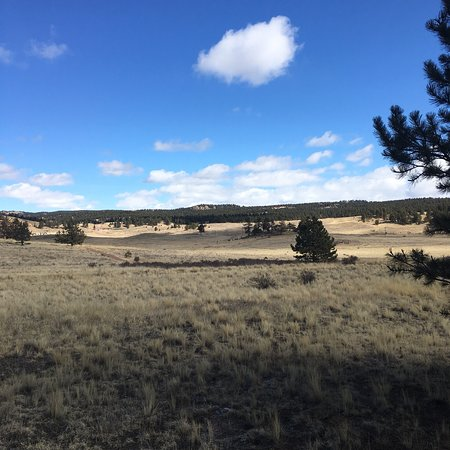 Florissant Fossil Beds National Monument : photo2.jpg