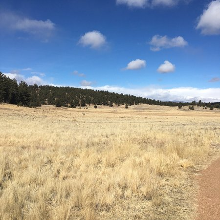Florissant Fossil Beds National Monument : photo3.jpg
