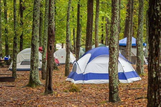 Tent Camping At Virginia Beach Va