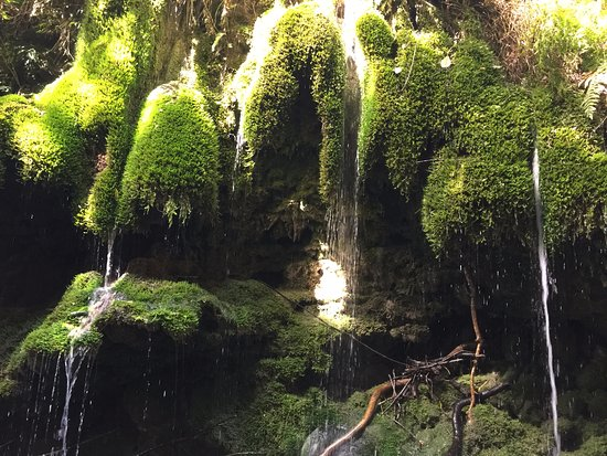 Martinborough, Nueva Zelanda: Moss Waterfall