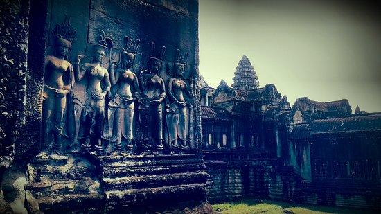 Lychee Angkor Driver