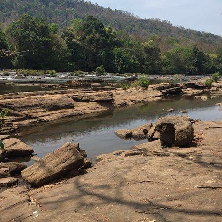 Athirappilly Waterfalls : photo1.jpg