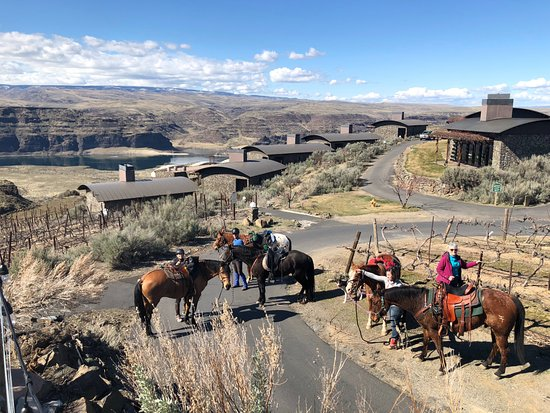 Quincy, WA: Horses and riders taking in the beauty