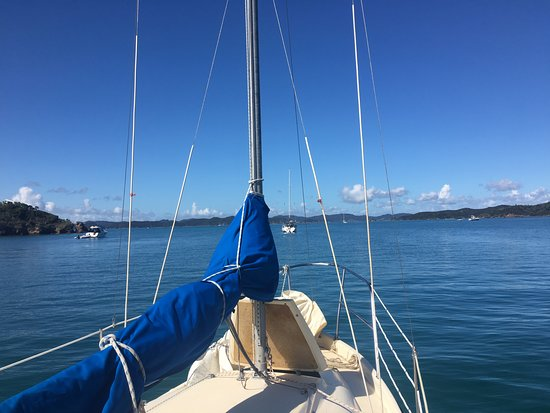 Opua, Νέα Ζηλανδία: Boat in a gorgeous anchorage in the Bay of Islands