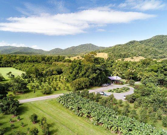 Diwan, Австралия: The property
