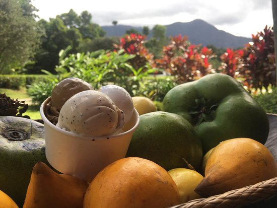 Diwan, Australië: Ice cream made site daily using unique and exotic fruits