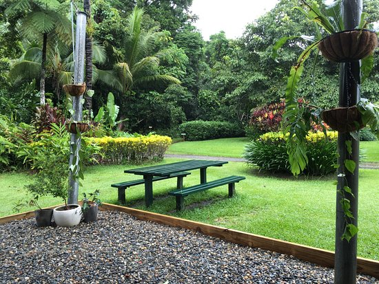 Diwan, Australia: Sit back, relax and enjoy your ice cream in this beautiful tropical setting
