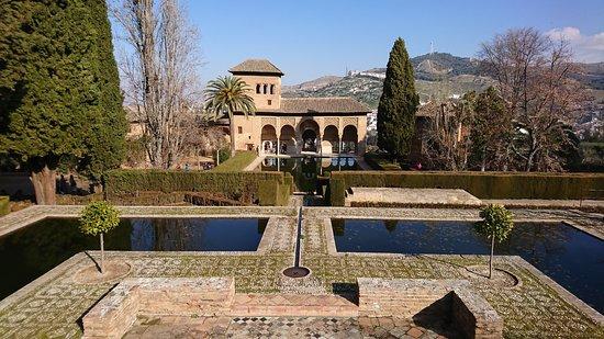 Alhambra : Feb 2018 - Al-Hambra (Garden view)