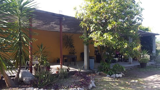 Hidalgo, México: Áreas verdes