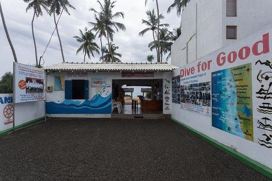Dive Seenigama Dive Lanka
