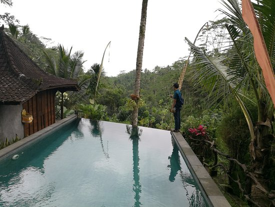DD Ubud Jungle Villa: A humble infinity pool