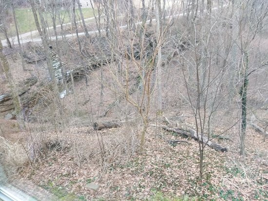 Sugar Grove, OH: IMG_20180317_104915_large.jpg