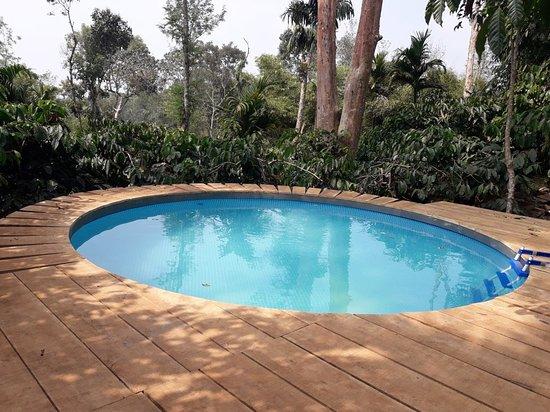 Coffee County Resort: swimming pool