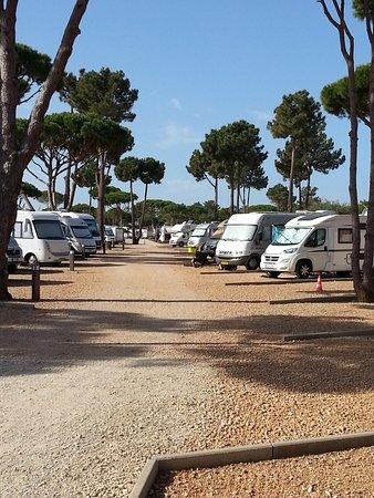 algarve motorhome park falesia albufeira portugal voir les tarifs et avis camping tripadvisor. Black Bedroom Furniture Sets. Home Design Ideas