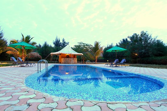 INFINITY RESORTS RANN OF KUTCH - Updated 2019 Prices & Ranch
