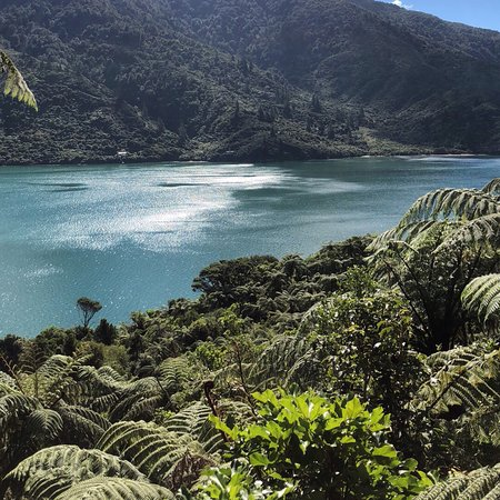 Endeavour Inlet, New Zealand: photo1.jpg