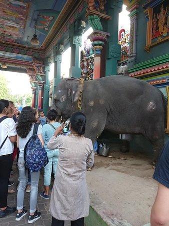 Arulmigu Manakula Vinayagar Temple: Laxmi