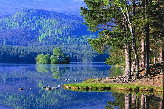 Aviemore, UK: Loch an Eilein caste from the shore
