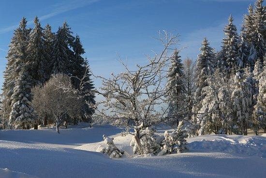 Sankt Märgen, Deutschland: Zimmeraussicht im Winter