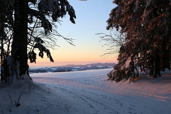Sankt Märgen, Deutschland: Landschaft in der Umgebung (5 Gehminuten)