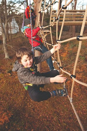 TreeZone Aerial Adventure at Rothiemurchus