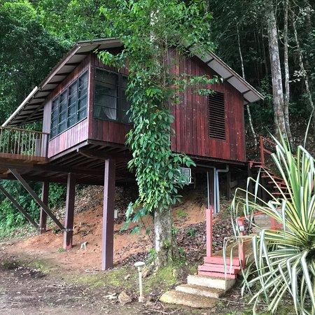 Berg en Dal, Surinam: photo0.jpg