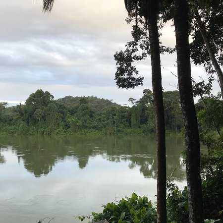 Berg en Dal, Surinam: photo4.jpg