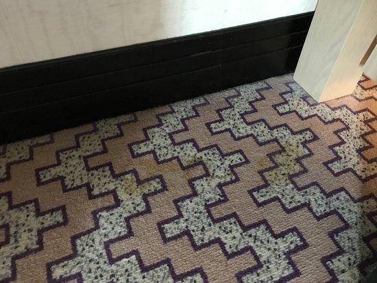 Jumeirah Mina A' Salam: dirty carpets