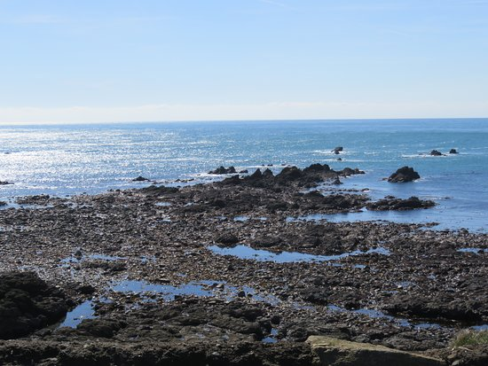 Lizard Point - Picture of The Lizard and Kynance Cove, Lizard ...