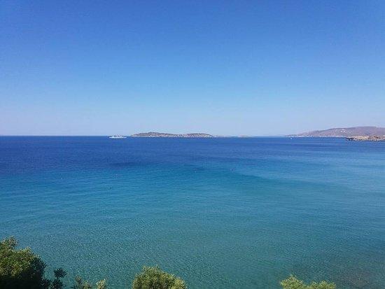 Foto de Aneroussa Beach Hotel
