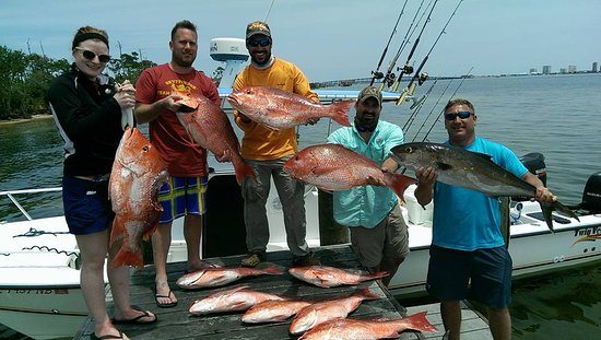 Bite Back Fishing Charters: Some More BIG Snapper and Amberjack.