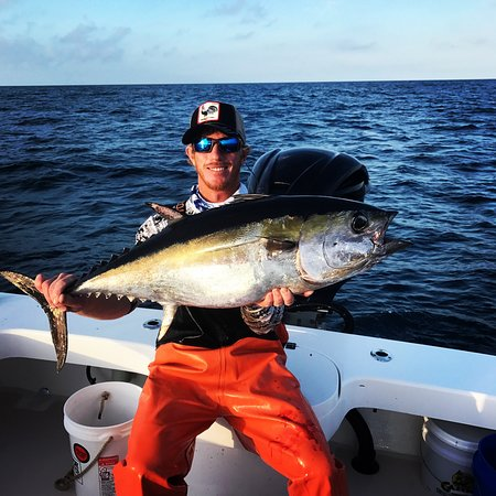 Holmes Beach, FL:  Blackfin Tuna is going to be some good sushi for dinner