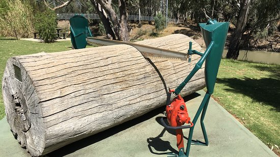 Balranald frogs