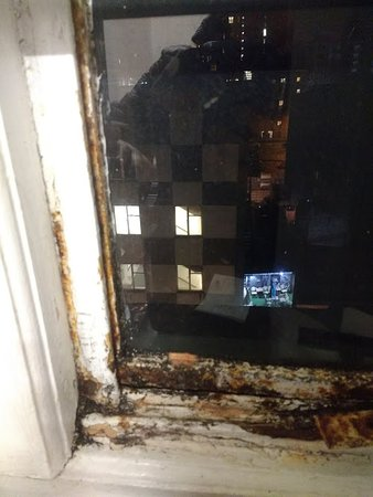 Hatters Hostel on Newton Street: one super grim rusted out window!