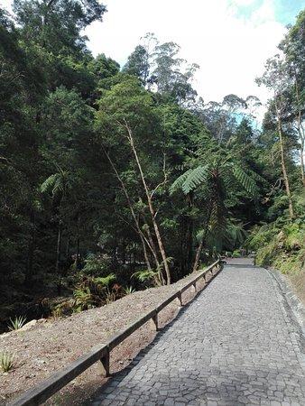 Environmental Interpretation Centre of Caldeira Velha: IMG_20180320_121627_large.jpg