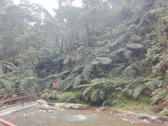 Environmental Interpretation Centre of Caldeira Velha: IMG_20180320_115943_large.jpg