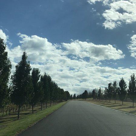 Dixons Creek, Australia: photo3.jpg