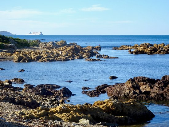 Island Bay: Looking across Rocky Coastline to Cook Strait from The Esplanade