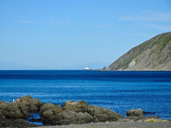 Island Bay: View toward Devil's Gate, Te Kopahou Reserve