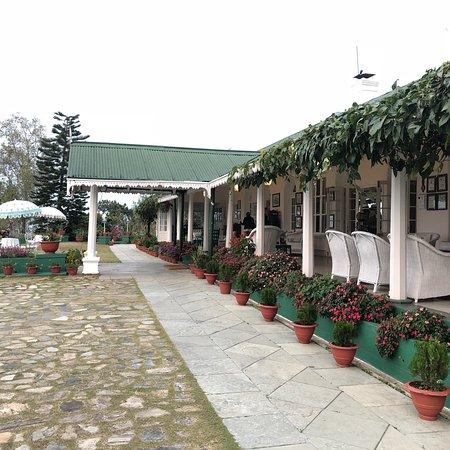 Glenburn Tea Estate: photo1.jpg