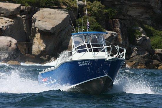 Oz Boat Hire
