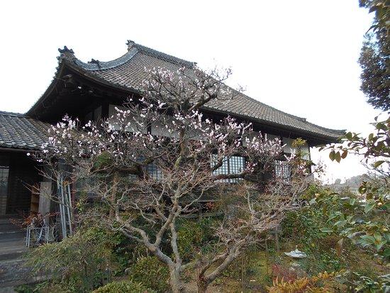Kato-ji Temple