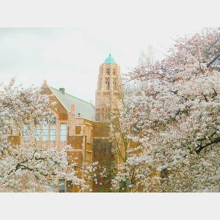University of Washington: IMG_20180318_130259_505_large.jpg