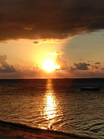 Taveuni Dive Resort: IMG_20180320_181251_large.jpg
