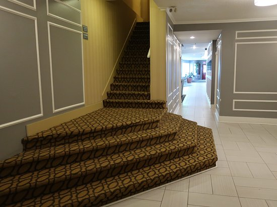 Best Western Dorchester Hotel: There are two elevators, but you can take the stairs.
