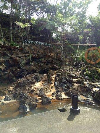 Green Forest Resort: IMG20180321090604_large.jpg